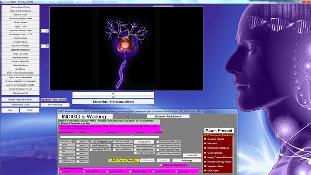 Acubalans Bioresonantie Wormerveer